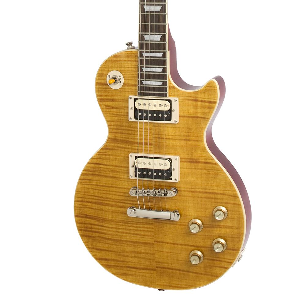 epiphone les paul slash appetite standard appetite amber 2010 guitar compare. Black Bedroom Furniture Sets. Home Design Ideas