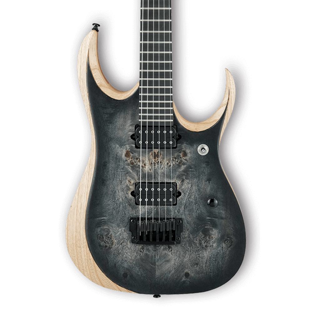 It is a photo of Bewitching Ibanez Iron Label Rgir27fe