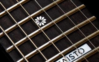 Taisto Guitars - V25-ET Fretboard